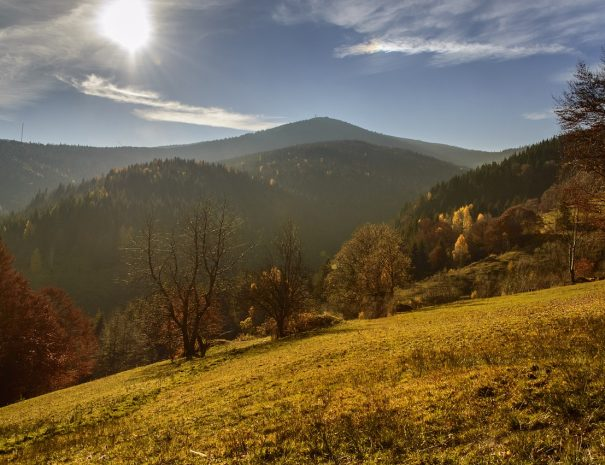 autumn-1075821_1280